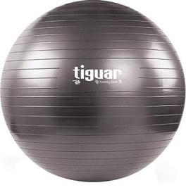 Tiguar Body Ball 3S 70cm Gray