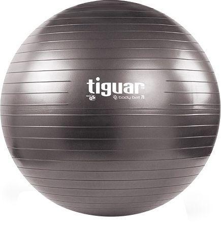 Tiguar Body Ball 3S 70cm Gray
