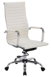 Signal Meble Office Chair Q-040 Cream