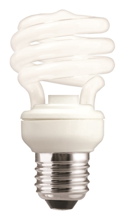 GE Compact Fluorescent Bulb 8W