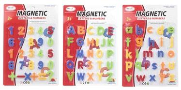 Lavinamasis žaislas Skaičiai ir raidės, nuo 3 m.