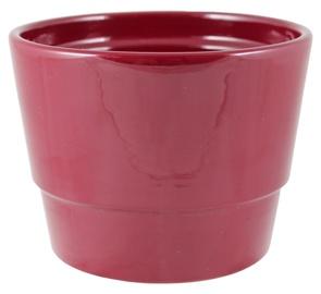 SN Ceramic Flower Pot 50112/067 Ø12cm Red