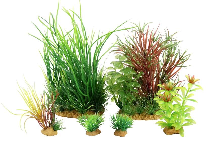 Zolux Decor Jalaya Plantkit Artificial Plants Nr4