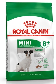 Royal Canin SHN Mini Adult 8 Plus 2kg