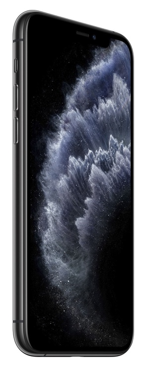 Mobilus telefonas Apple iPhone 11 Pro 256GB Space Grey