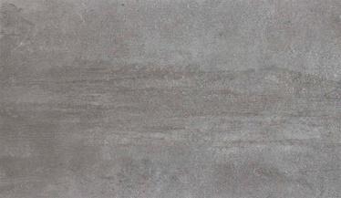 Akmens masės plytelės Grunge Grey, 60 x 30 cm