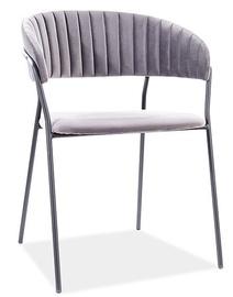 Ēdamistabas krēsls Signal Meble Lira B Velvet, pelēka