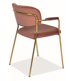 Стул для столовой Signal Meble Carlo II Velvet Antique Pink/Gold, 1 шт.