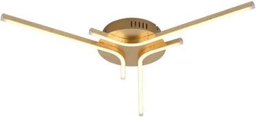 Leuchten Direkt Gregor 11323-12 Ceiling Lamp 3x6W LED Gold