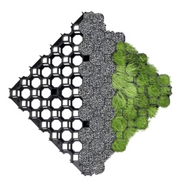 Korys vejai, žalias, 49.3 x 49.3 cm