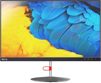 Monitorius Lenovo ThinkVision X24-20