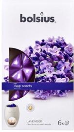 Свеча Bolsius True Scents Lavender, 6 шт.