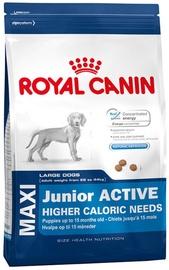 Royal Canin SHN Maxi Junior Active 15kg