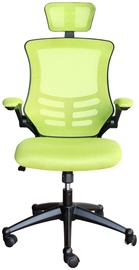 Evelekt Ragusa 27716 Light Green