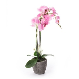 SN Artificial Orchid Flower Pot RU-5747 68cm