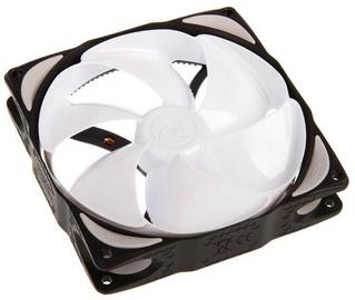 Noiseblocker Fan NB-eLoop Series 120mm B12-P PWM