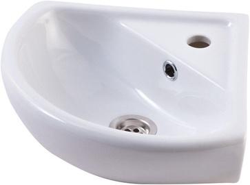 Rosa Basin White 450mm