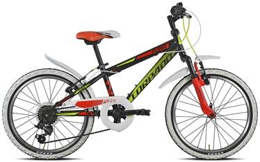Kalnų dviratis Puma 20'