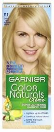 Kраска для волос Garnier, 0.06 л