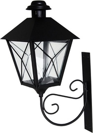 Polar Lanterns Paula Black 008862