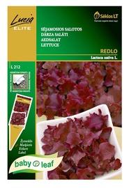 Salātu sēklas Redlo