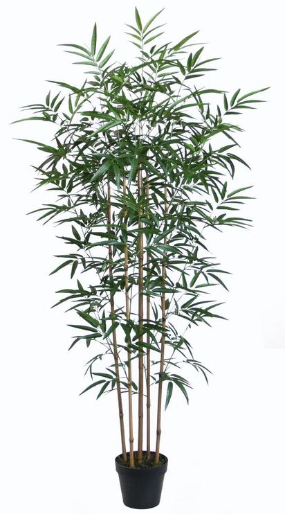 Искусственный цветок Home4you Artificial Bamboo 5 Straws H150cm