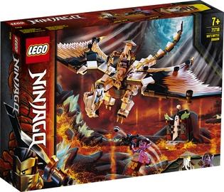Konstruktor LEGO Ninjago 71718