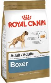 Royal Canin BHN Boxer Adult 12kg