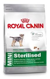 Sausas ėdalas šunims Royal Canin Mini Sterilised, su vištiena, 2 Kg