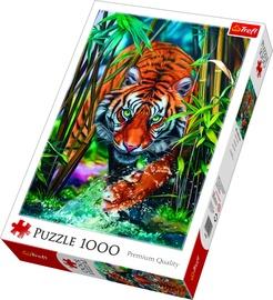 Puzle Trefl Tiger, 1000 gab.
