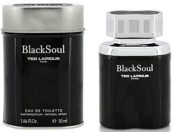 Tualetes ūdens Ted Lapidus Black Soul Men 50ml EDT