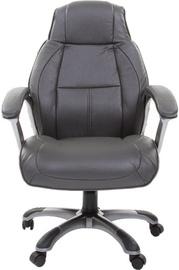 Chairman Executive 436 Grey