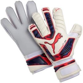 Vārstusarga cimds Puma Evo Power Grip 2 Aqua Gloves 041145 15 Size 9.5
