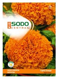 Seemned Peiulill Cupid Orange