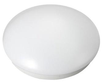 Maclean Lamp 5W White