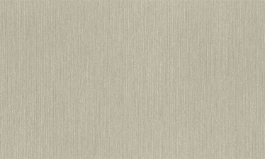Flizelino tapetai, Rasch, 960037, Alla Prima, pilki, vienspalviai