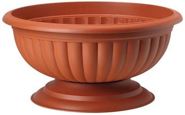 Form Plastic Grace 1003 D41 Brown