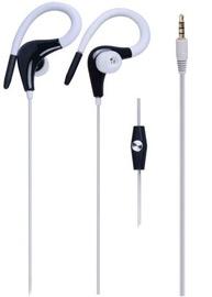 Ausinės M.TK K3160 Stereo Earphones White/Black