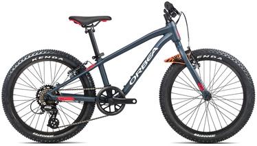 """Jalgratas Orbea MX 20 Dirt, sinine, 20"""""""