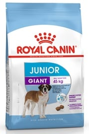 Royal Canin SHN Giant Junior 15kg