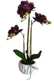MN Artificial Flowers Orchid 3370067