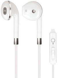 Ausinės Forever GSM036398 Earpods White
