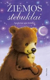 Knyga žiemos stebuklai