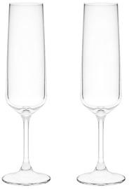 Maku Champagne Glass 2pcs