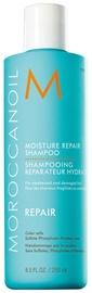 Šampūns Moroccanoil Moisture Repair, 250 ml