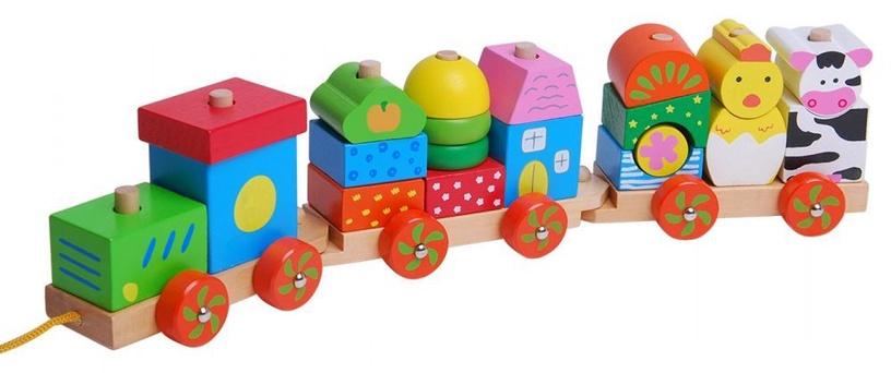 EcoToys Wooden Train 2031
