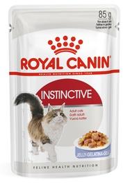 Mitrā kaķu barība (konservi) Royal Canin FHN Instinctive In Jelly 85g 12pcs