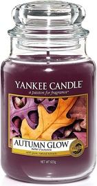 Yankee Candle Classic Large Jar Autumn Glow 623g