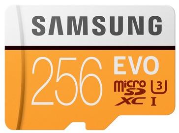 Samsung Evo 256GB microSDXS Class 10 + Adapter