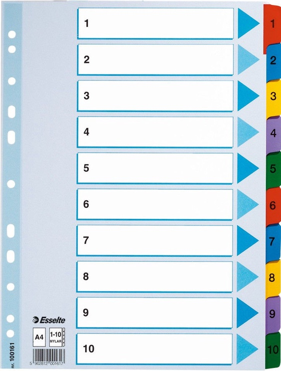Esselte Document Divider Book 1-10 Colored